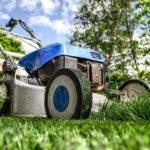kertész jogt